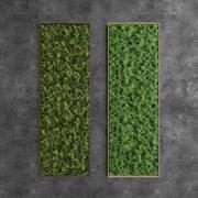 Dekoratives rechteckiges grünes Moos 3d model
