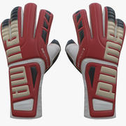 Puma evoSPEED 3.3 Keeper Glove 3d model