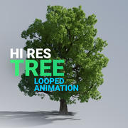 Hi Res Tree Looped Animation 3d model