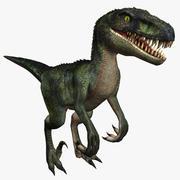 猛禽恐龙 3d model