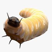 Maggot (Pose 2) 3d model
