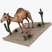 Camel Desert and Cactus 3d model