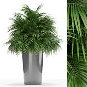 Plants collection 178 3d model