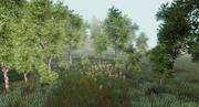 Pakiet leśnej brzozy dla Unity 3d model