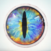 Cat Eye Mix Low Poly 3d model