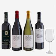 şarap şişesi seti 2 3d model