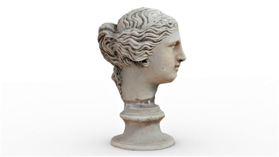 Female Bust royalty-free 3d model - Preview no. 8