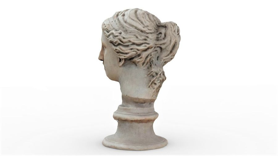 Female Bust royalty-free 3d model - Preview no. 5