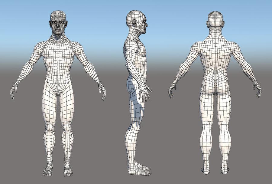 解剖学的体 royalty-free 3d model - Preview no. 3