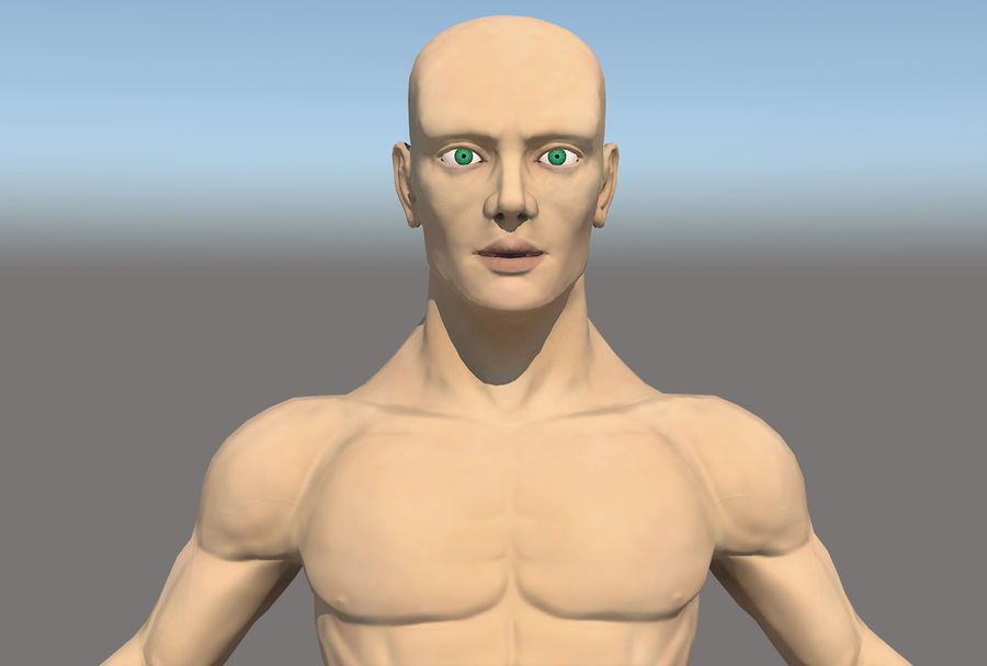 解剖学的体 royalty-free 3d model - Preview no. 2
