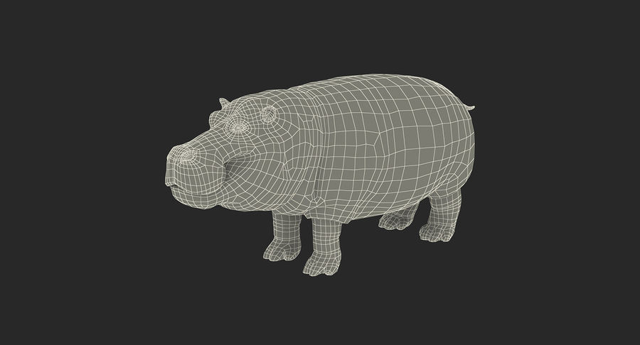 African Animals Collection 5 royalty-free 3d model - Preview no. 66