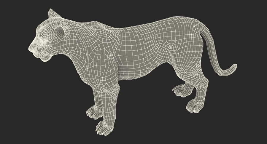 African Animals Collection 5 royalty-free 3d model - Preview no. 63