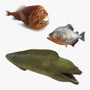 Collection de poissons dangereux 3d model