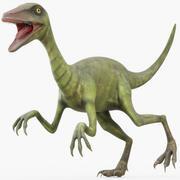Compsognathus (attrezzato) 3d model