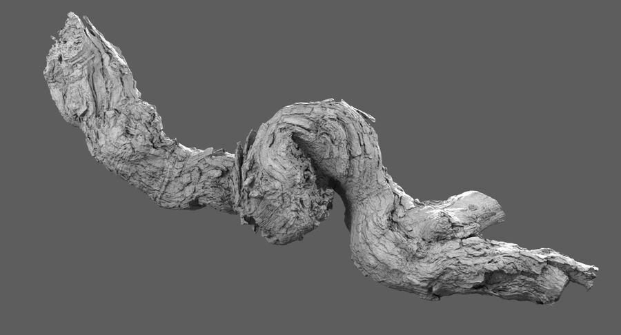 Tree Branch Collection A royalty-free 3d model - Preview no. 15