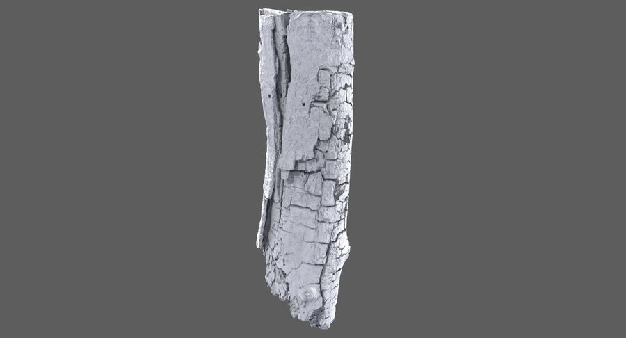 Tree Branch Collection A royalty-free 3d model - Preview no. 13