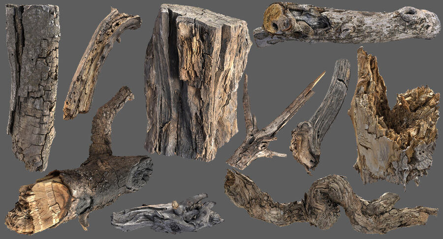 Tree Branch Collection A royalty-free 3d model - Preview no. 3