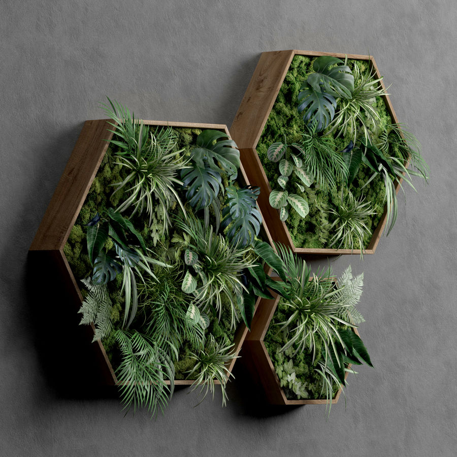 Decorative Pentagonal  Moss Set royalty-free 3d model - Preview no. 2