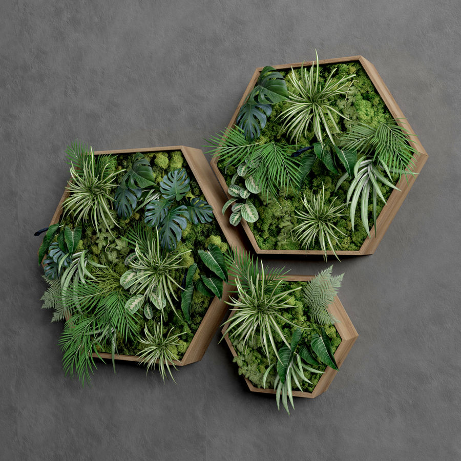 Decorative Pentagonal  Moss Set royalty-free 3d model - Preview no. 3