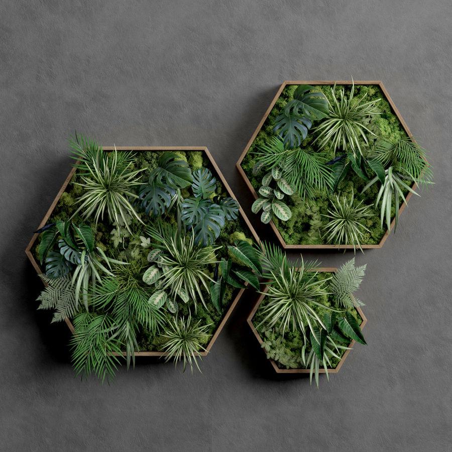 Decorative Pentagonal  Moss Set royalty-free 3d model - Preview no. 1