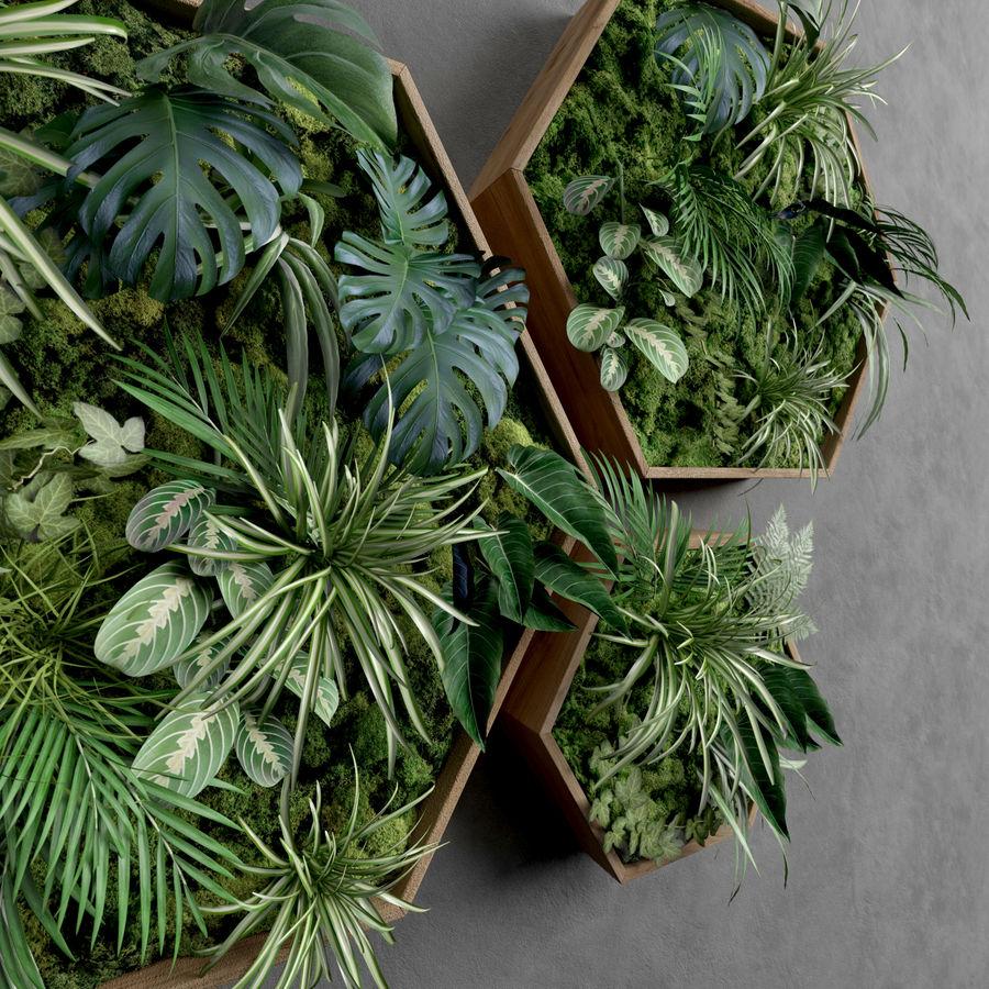 Decorative Pentagonal  Moss Set royalty-free 3d model - Preview no. 4