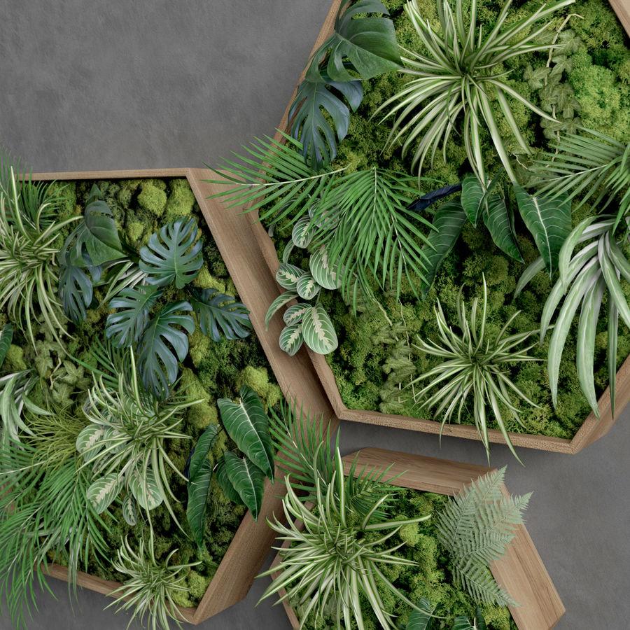 Decorative Pentagonal  Moss Set royalty-free 3d model - Preview no. 5