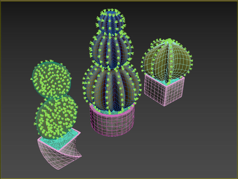 Rośliny kaktusowe royalty-free 3d model - Preview no. 6