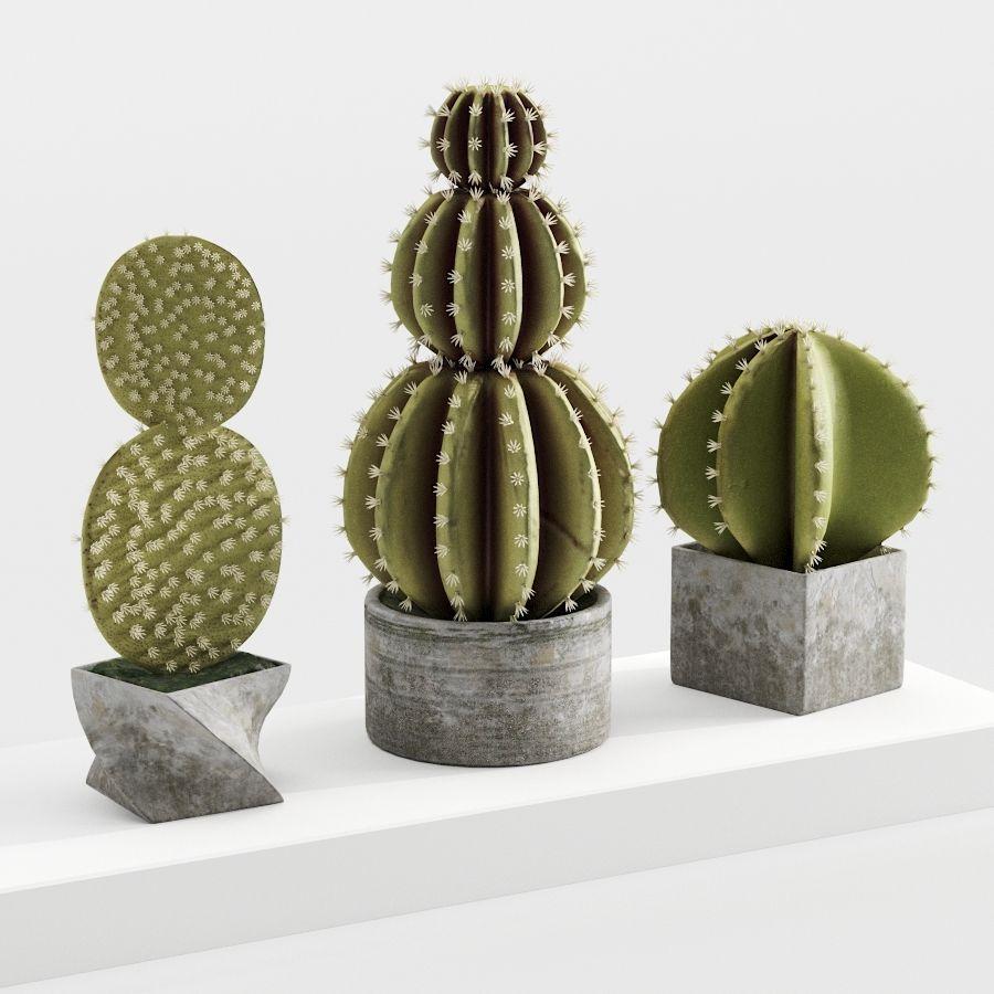 Rośliny kaktusowe royalty-free 3d model - Preview no. 2