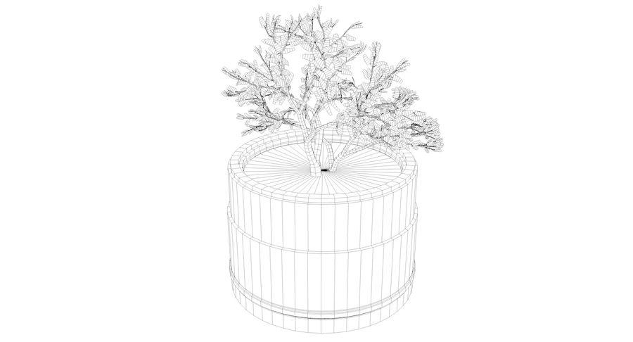 Plante royalty-free 3d model - Preview no. 6