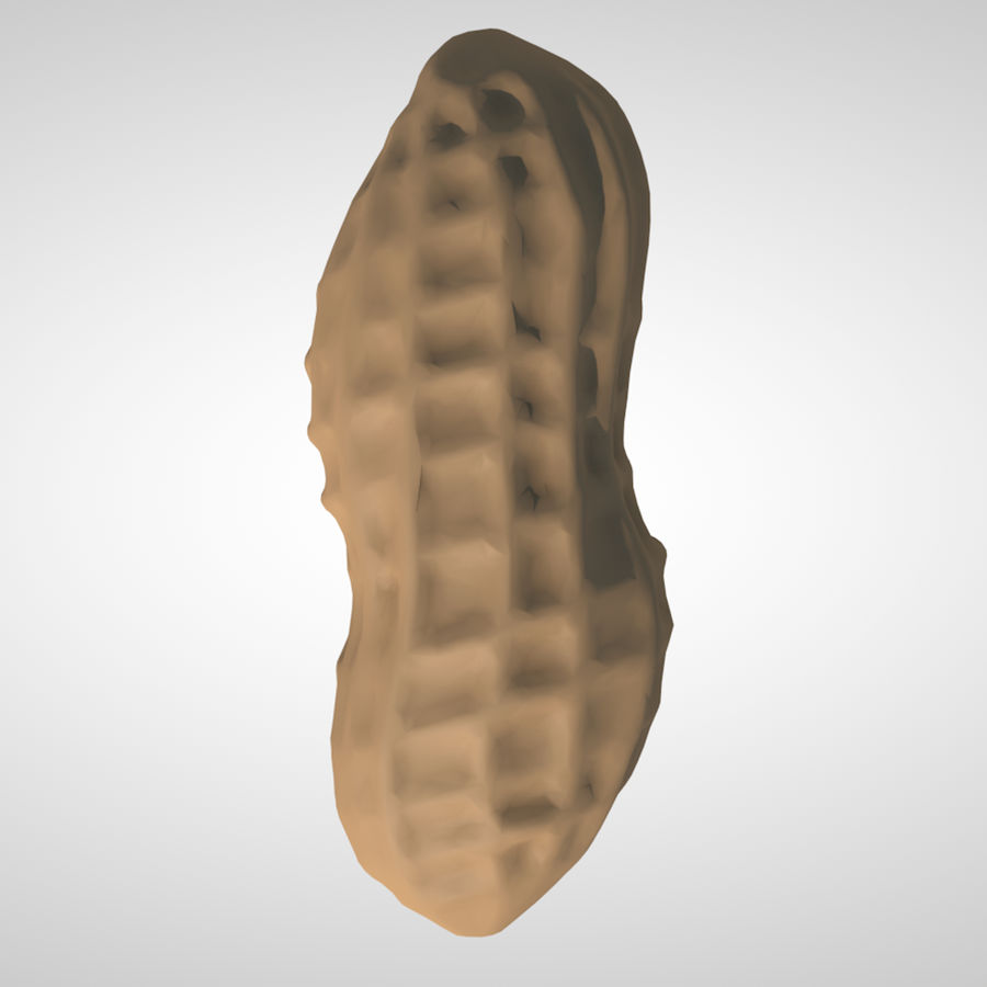 peanut royalty-free 3d model - Preview no. 5