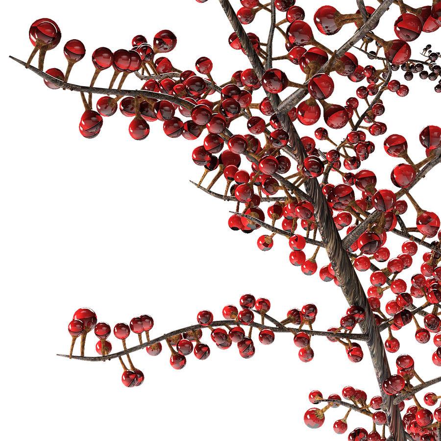 Plant in de exotische plant van de pottenbloempot royalty-free 3d model - Preview no. 4