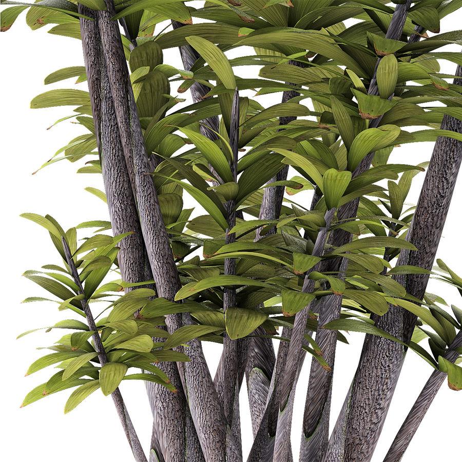 盆栽花盆中的植物异国植物 royalty-free 3d model - Preview no. 6