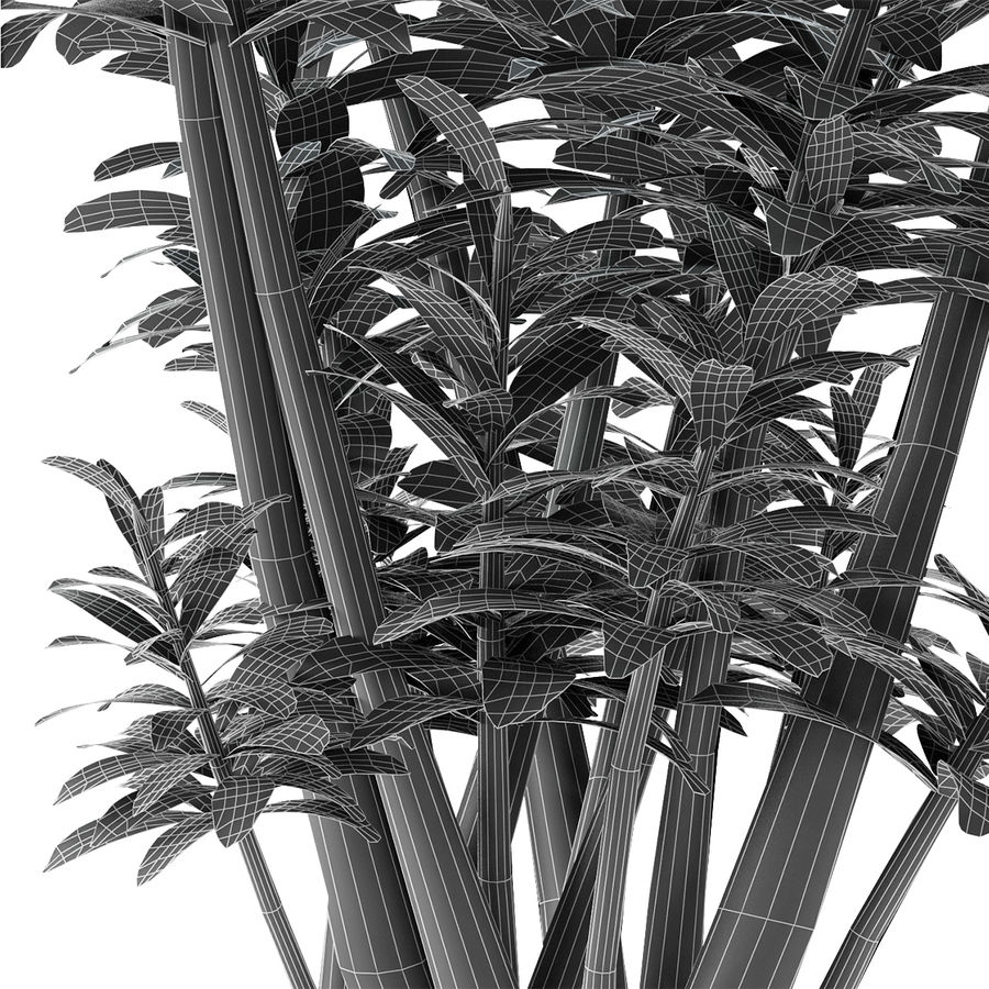 盆栽花盆中的植物异国植物 royalty-free 3d model - Preview no. 7