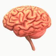 Ludzki mózg 3d model