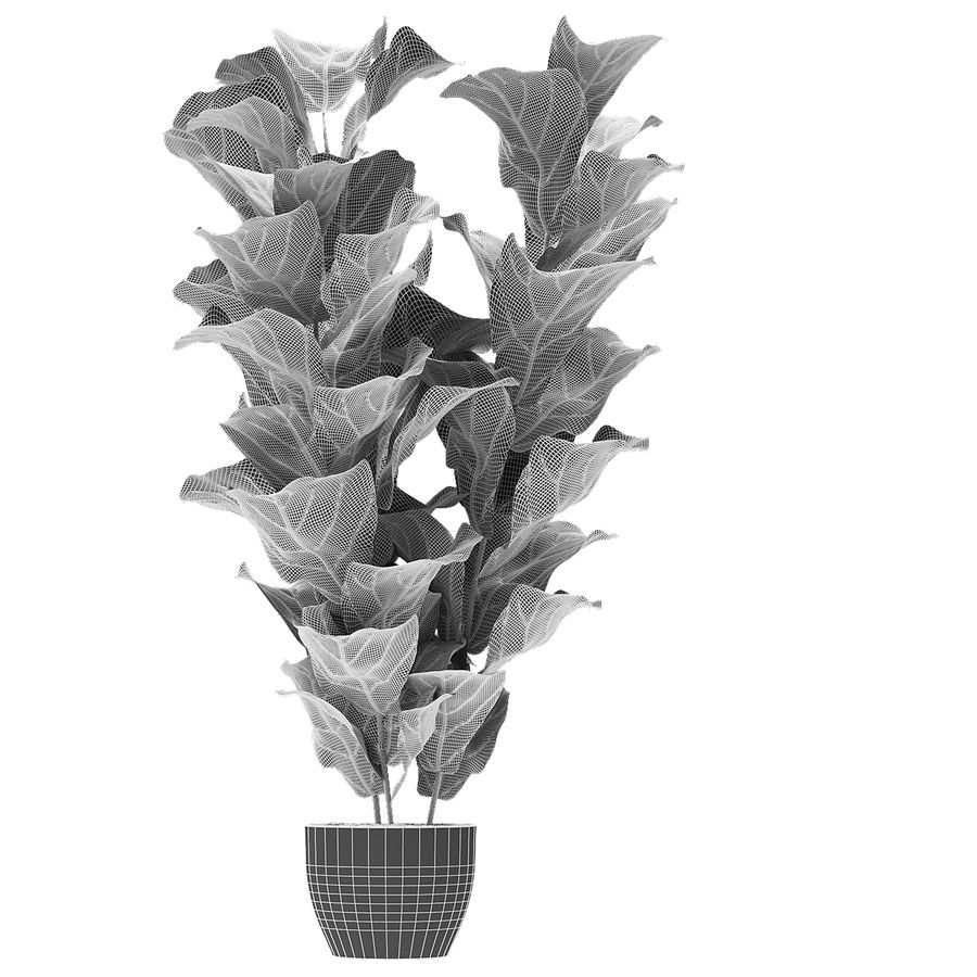 Planta em vaso de plantas exóticas royalty-free 3d model - Preview no. 5