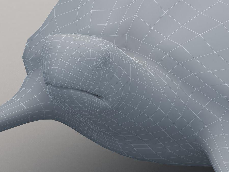 棱皮海龟Dermochelys Coriacea royalty-free 3d model - Preview no. 19