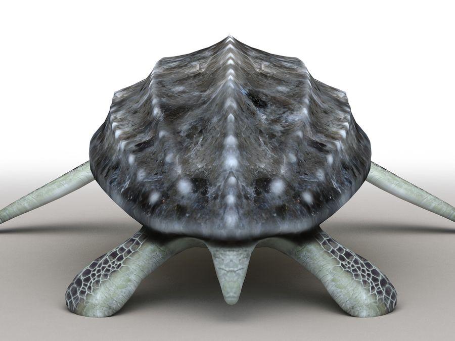 棱皮海龟Dermochelys Coriacea royalty-free 3d model - Preview no. 16