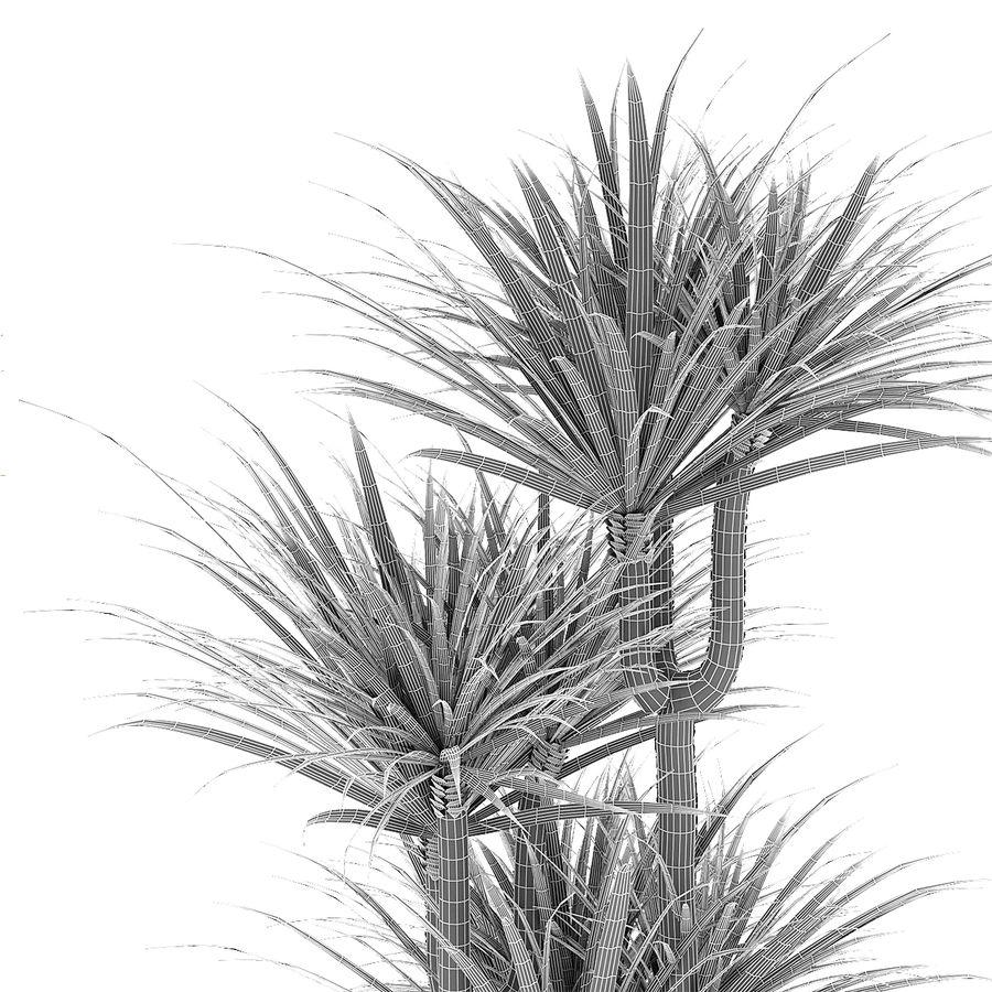 Plant in de exotische plant van de pottenbloempot royalty-free 3d model - Preview no. 6