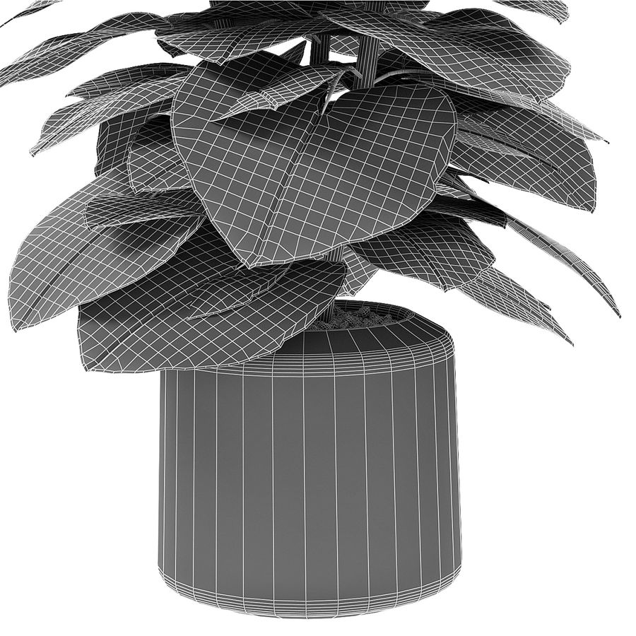 Plante dans un pot de plantes exotiques royalty-free 3d model - Preview no. 7