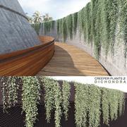 Растения дихондры (+ GrowFX) 3d model