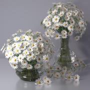 Realistico camomilla daisy Vaso di vetro arredamento interno 3d model