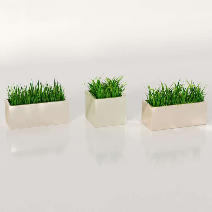 Indoor Plants: Potted Grass royalty-free 3d model - Preview no. 2