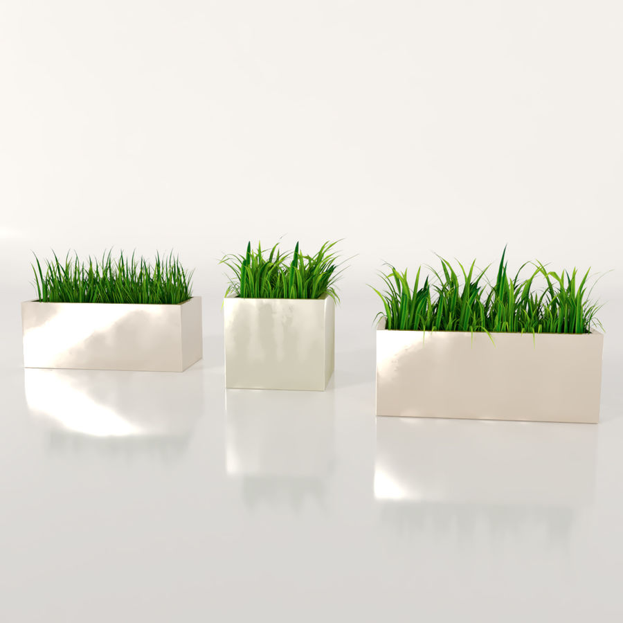 Indoor Plants: Potted Grass royalty-free 3d model - Preview no. 3