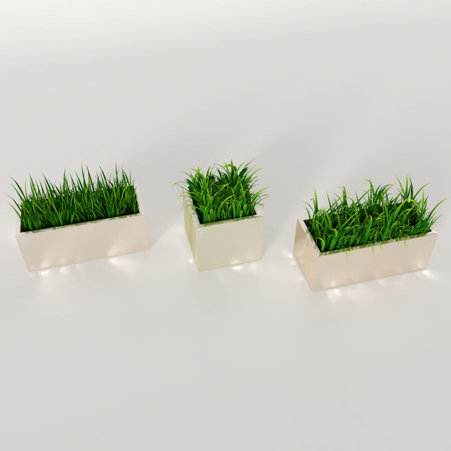 Indoor Plants: Potted Grass royalty-free 3d model - Preview no. 4