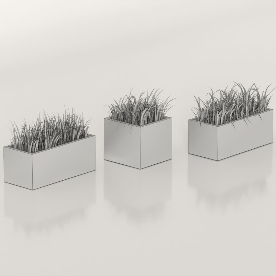 Indoor Plants: Potted Grass royalty-free 3d model - Preview no. 6