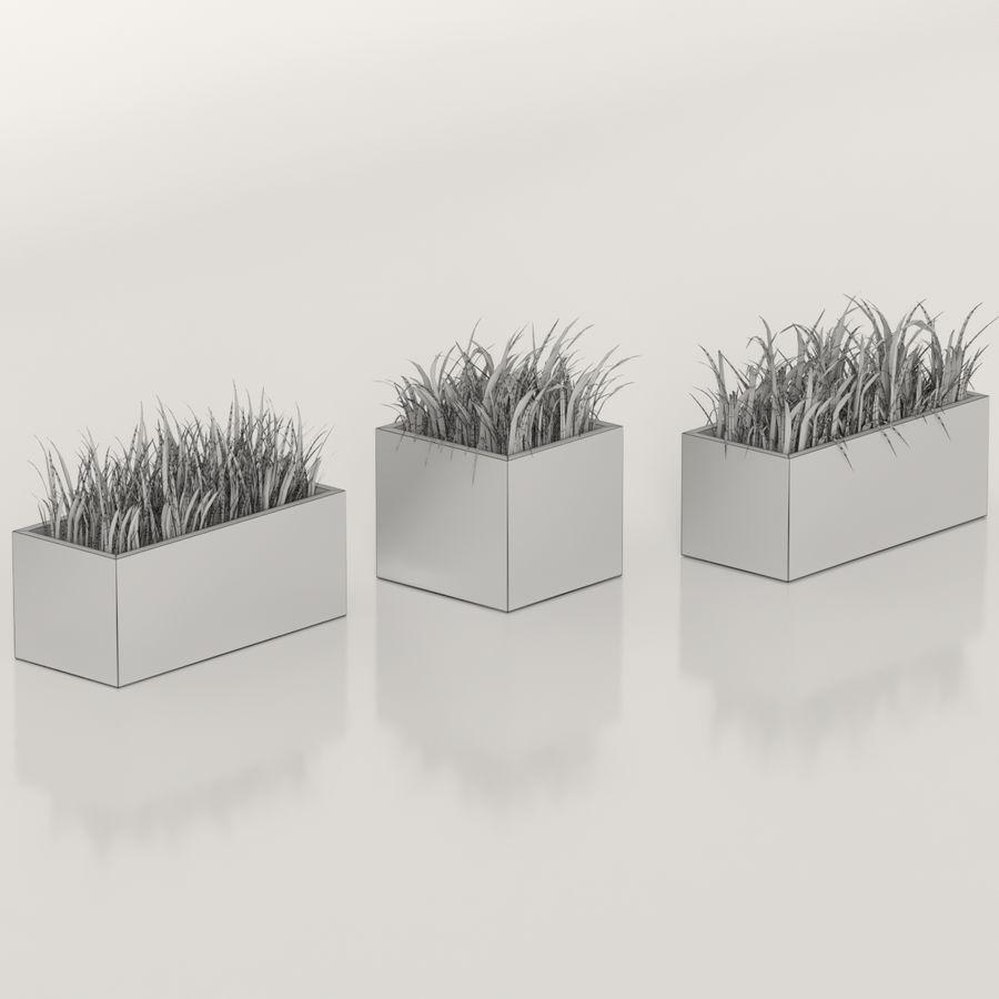 실내 식물 : 화분에 심은 잔디 royalty-free 3d model - Preview no. 6
