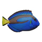 Blue Tang 3d model