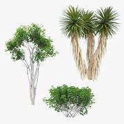 Collezione di alberi 01 3d model