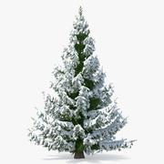 Fijnspar in zware sneeuw 3d model