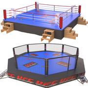 Fighting Arenas 3d model